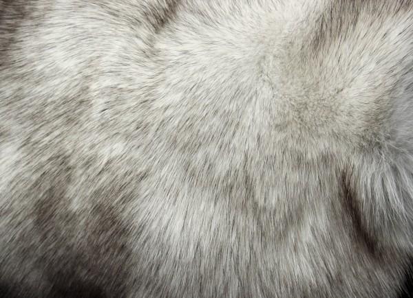 Fine Blue Fox Fur Muff