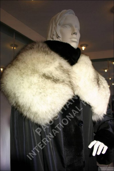 155 Blue fox fur collar - 100% Genuine SAGA furs