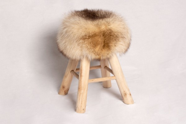 Canadian Raccoon Sitting Chair with Pine-Wood