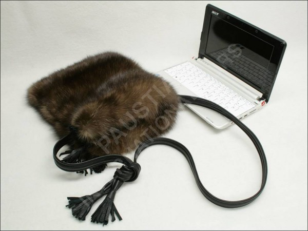 670 Fur Laptop Case - Russian Barguzin Sable Sylveries
