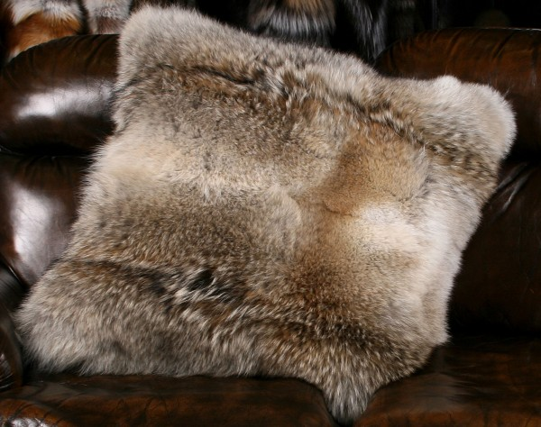 Beautiful Coyote Pillow made of Natural Coyote
