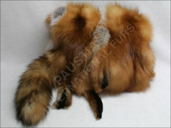 Distinguished muff made of Canadian red fox furs with tail and paws intact