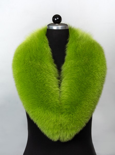 Blue Fox Fur Collar in Apple Green