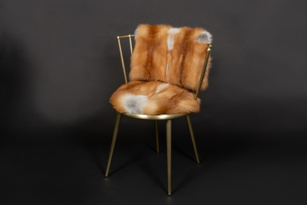 Red Fox Chair from European Foxes