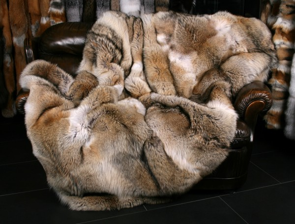 Coyote Fur Blanket - Fur Harvesters Quality