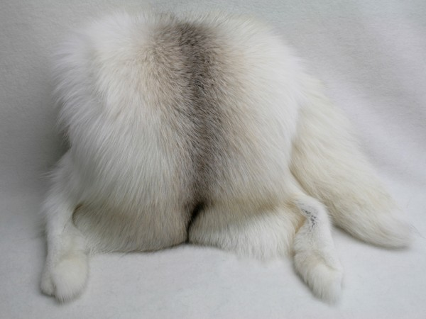 Gorgeous muff made of fawn light fox furs with tail and paws intact