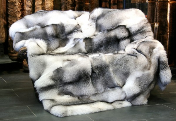 Shadow blue frost fox blanket - Fox Furs