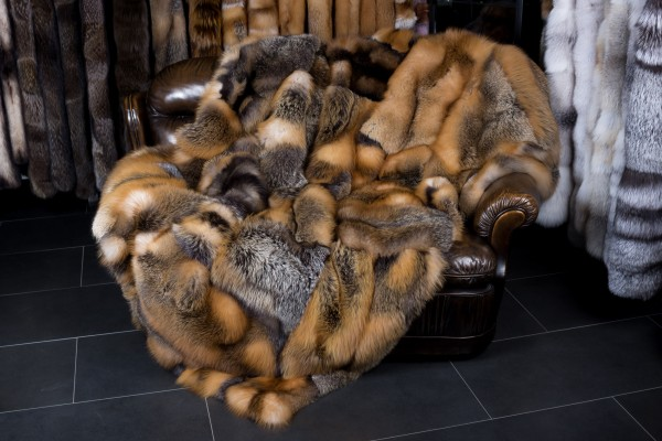 Lujosa manta de zorro canadiense salvaje