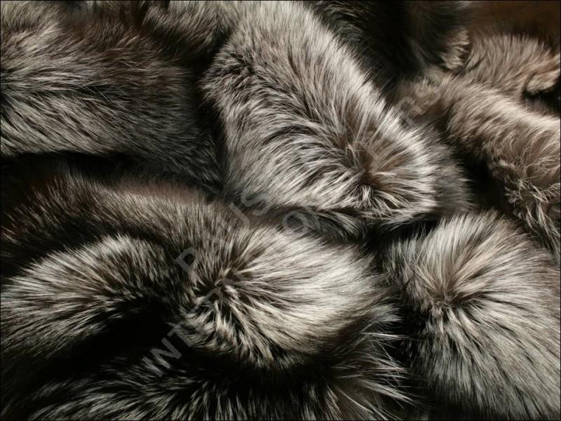 2010_02_09_13-45-56-6-915-saga-silver-fox-fur-blanket