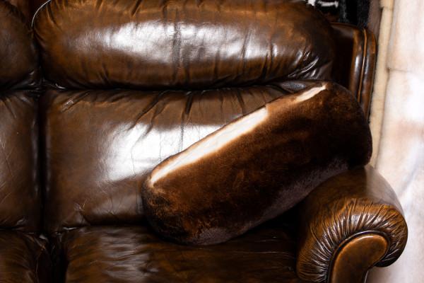 Piel almohada hecha con Castor Rex conejo