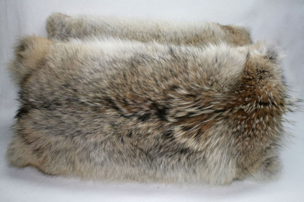 Coyote fur pillow - double sided